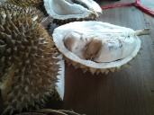 Durian fruit - not my favorite